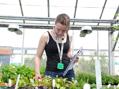 Myerscough College - Horticulture Glasshouses