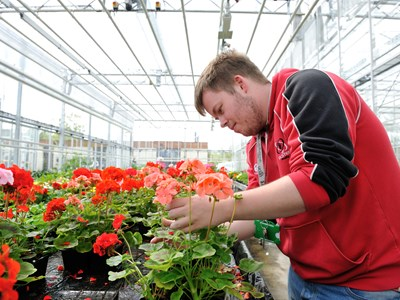 Myerscough College Horticulture